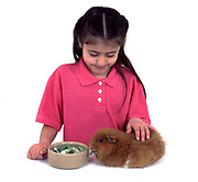 Young Girl with bowl of fresh food for Pet Guinea Pig, aged 7 years old, domestic, white background, cut out, studio, tan or ginger colour