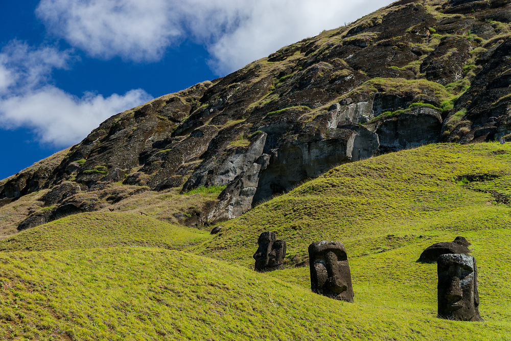 The heads of Moai statues peek out from the grassy hillsides of a quarry. Photo by Adel B. Korkor.