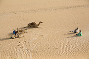 Tuareg men sit in the desert sand with camels.