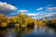 SUP in late light on the Whitefish River in Whitefish, Montana, USA