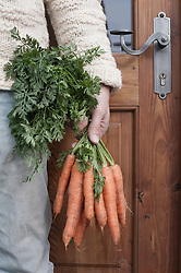Mid section of a man holding bunch of carrots in his hand in front of wholefood shop, Bavaria, Germany