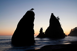 North America, United States, Washington, Olympic National Park, Pacific Ocean and sea stacks at Second Beach during sunset