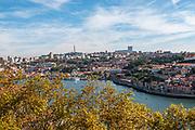 View of the Douro River Porto (left) and Vila Nova de Gaia (Right) from Jardins do Palacio de Cristal (Crystal Palace Gardens), Porto, Portugal