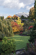The Quarry Gardens display some nice Fall foliage colours in the maples and other trees at Queen Elizabeth Park - Vancouver, British Columbia, Canada.  The Bloedel Conservatory is in the background.