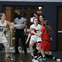 Women's Basketball: Wisconsin Lutheran College Warriors vs. Milwaukee School of Engineering Raiders