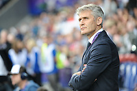 Gerard Precheur of Olympique Lyon during the UEFA Women's Champions League Final between Lyon Women and Paris Saint Germain Women at the Cardiff City Stadium, Cardiff, Wales on 1 June 2017. Photo by Giuseppe Maffia.<br /> <br /> Giuseppe Maffia/UK Sports Pics Ltd/Alterphotos