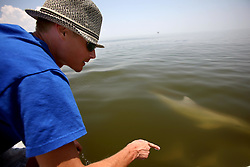 28 May 2010. Barataria Bay to Grand Isle, Jefferson/Lafourche Parish, Louisiana. <br /> Justin Workmon points out a  bottle nosed porpoise swimming through waters that would ordinarily be crystal clear but are now gravy coloured thanks to dispersed oil just off Grand Terre Island where Barataria Bay meets the Gulf of Mexico. Ordinarily the ocean would be filled with shrimp boats, sport fishermen, and sea birds, especially in the run up to memorial day weekend. The ecological and economic impact are devastating to the region. Oil from the Deepwater Horizon catastrophe is evading booms laid out to stop it thanks in part to the dispersants which means the oil travels at every depth of the Gulf and washes ashore wherever the current carries it. The Louisiana wetlands produce over 30% of America's seafood and are the most fertile of their kind in the world.<br /> Photo credit; Charlie Varley<br /> www.varleypix.com