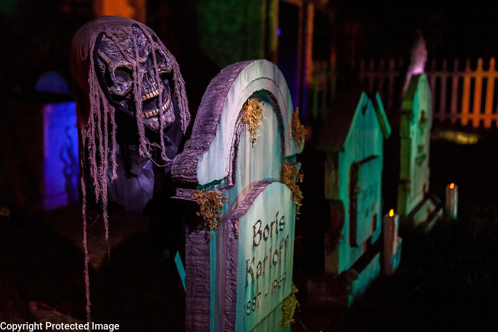"""A skeleton pops up from behind a gravestone in Chris Baker's haunted yard in South Yarmouth, MA. Every year Baker sets up an elaborate Halloween display in his yard and on Halloween, neighborohood residents walk through his frightening """"vortex"""" of horror while trick or treating."""