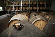 Wooden whisky barrels, White Oak Distillery, the city of Akashi, Hyogo prefecture, Japan.