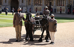 Fell ponies, Balmoral Nevis and Notlaw Storm, and the Duke of Edinburgh's driving carriage in the Quadrangle ahead of the funeral of the Duke of Edinburgh in Windsor Castle, Berkshire. Picture date: Saturday April 17, 2021.