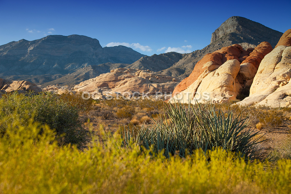Red Rock Canyon Nevada Scenic Landscape