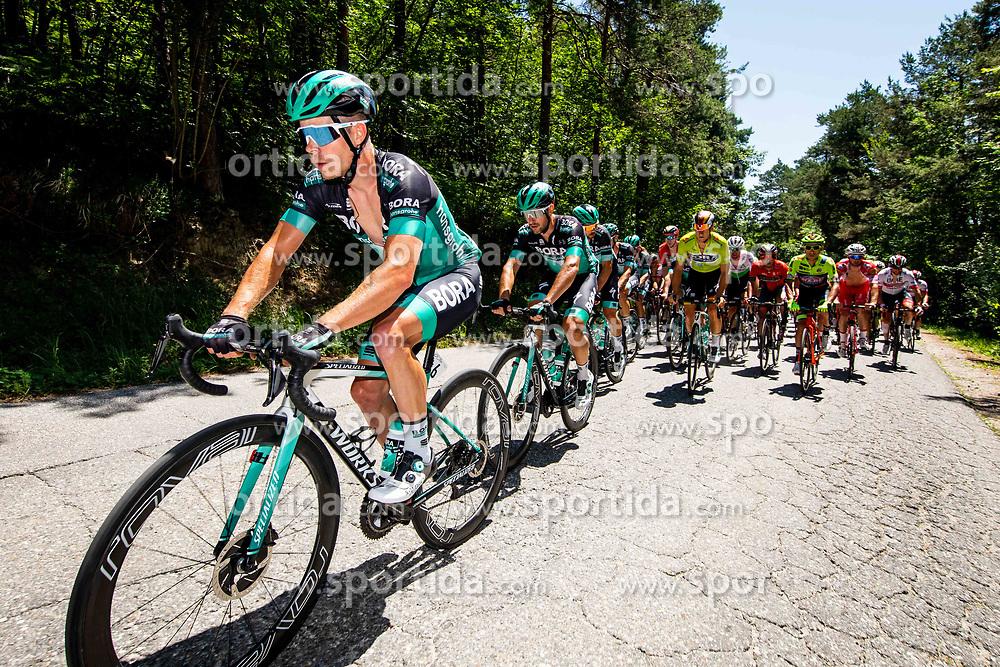 Juraj Sagan (SVK) of Bora - Hansgrohe, Pascal Ackermann (GER) of Bora - Hansgrohe and peloton 2nd Stage of 26th Tour of Slovenia 2019 cycling race between Maribor and  Celje (146,3 km), on June 20, 2019 in Celje, Maribor, Slovenia. Photo by Vid Ponikvar / Sportida
