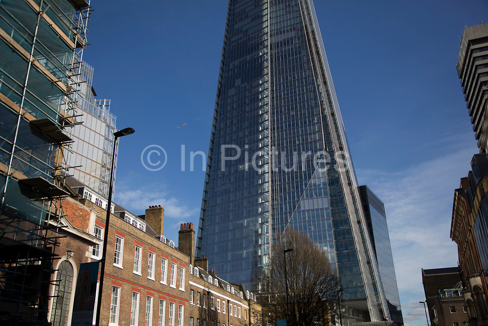 Spring growth of trees next to the Shard in London, England, United Kingdom. Nature next to man made in the city.