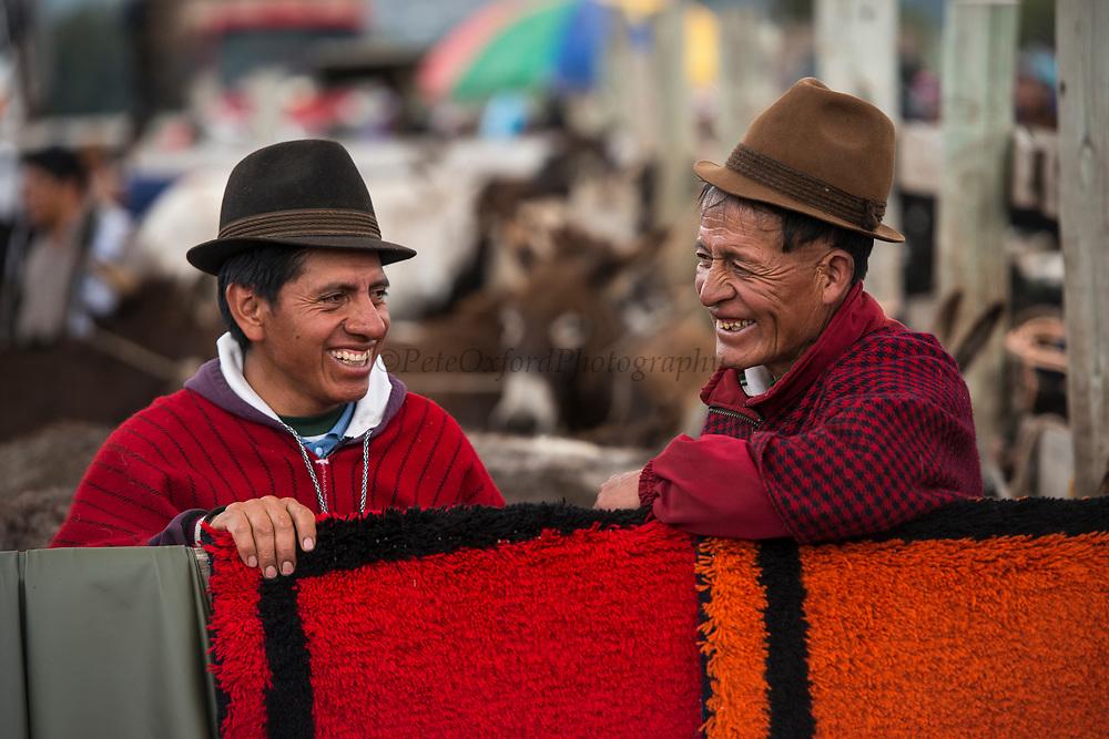 Quichua Indian men<br /> Calpi animal market<br /> Parish of Riobamba, Chimborazo Province<br /> Andes<br /> ECUADOR, South America