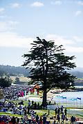 August 15, 2019:  Pebble Beach Concours