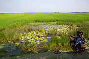 A woman sits fishing on the edge of a paddy field on the 2nd of October 2018 in Satkhira District, Bangladesh. Satkhira is a district in southwestern Bangladesh and is part of Khulna Division. It lies along the border with West Bengal, India. It is on the bank of the Arpangachhia River. (photo by Andrew Aitchison / In pictures via Getty Images)