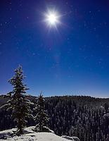 A full moon lights the snowy trees over McIntyre Creek, Yukon, at Christmas