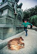 Boy rollerblades past Magellan statue and sleeping dog, Punta Arenas, Patagonia, Chile.