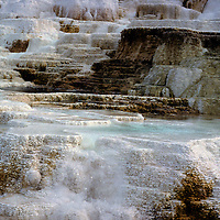 North America, USA, United States, Wyoming, Yellowstone. Mammoth Hot Springs & Terraces at Yellowstone National Park.
