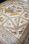 African animals and fish from the 3rd century Roman mosaic villa floor from Lod, near Tel Aviv, Israel. The Roman floor mosaic of Lod is the largest and best preserved mosaic floor from the levant region along the eastern Mediterranean coast. It is unclear whether the owners were Jewish, Christian or pagan but either way they would have been wealthy to own such a magnificent floor. The Shelby White and Leon Levy Lod Mosaic Centre, Lod, Israel. .<br /> <br /> If you prefer to buy from our ALAMY STOCK LIBRARY page at https://www.alamy.com/portfolio/paul-williams-funkystock/roman-mosaic.html . Type -    lod  - into LOWER SEARCH WITHIN GALLERY box - Refine search by adding a subject, place, background colour, museum etc.<br /> <br /> Visit our ROMAN WORLD PHOTO COLLECTIONS for more photos to download or buy as wall art prints https://funkystock.photoshelter.com/gallery-collection/The-Romans-Art-Artefacts-Antiquities-Historic-Sites-Pictures-Images/C0000r2uLJJo9_s0