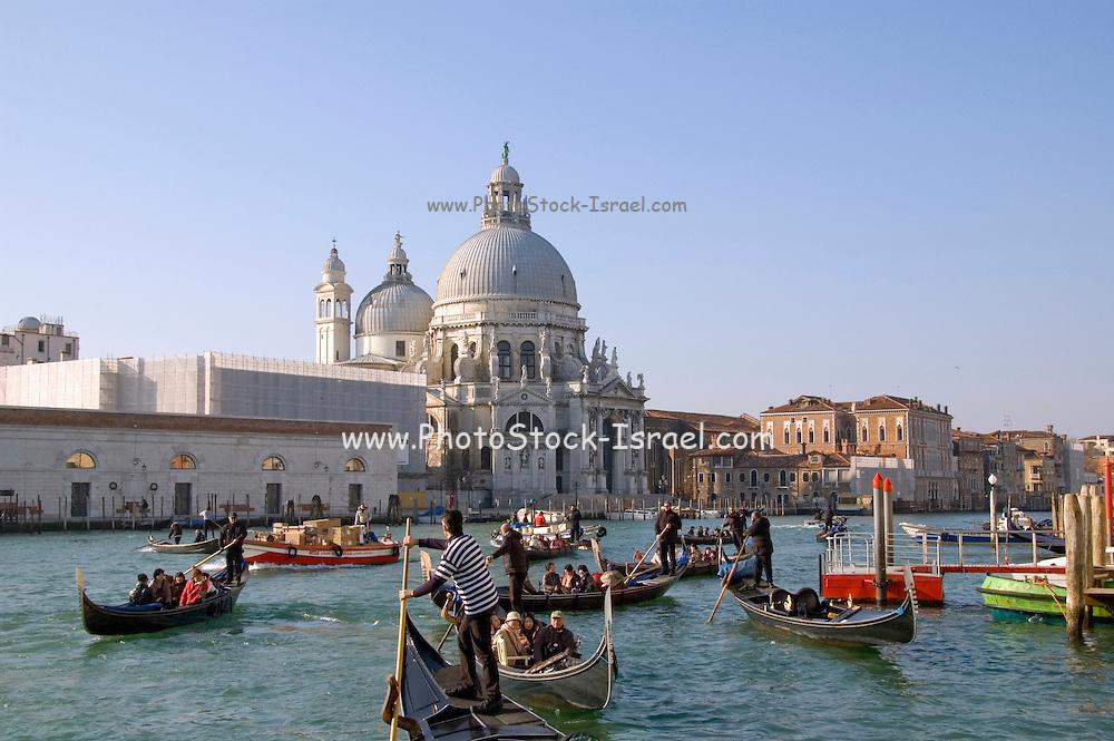 Italy, Venice, Santa Maria della Salute