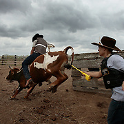 Juan Alonzo, 17, flies out of the chute atop one of Frank Quesada's bulls during practice at the ranch in Weslaco. Gustavo Trevino, 17, gives chase to the ride, encouraging the bull to buck more with help from a cattle prod and to offer protection to Alonzo when he comes off the bull. <br /> Nathan Lambrecht/The Monitor