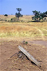 """Kanye Tanzania Border International Boundary Sign<br /> """"Do Not Proceed Beyond This Point"""""""