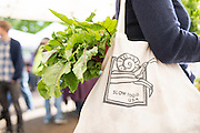 of CookWithWhatYouHave.com, a recipe guide for eating local food.