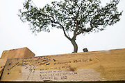 A tribute written on a fence is pictured in front of tree surgeons working with the National Eviction Team on behalf of HS2 Ltd to fell a 200-year-old oak tree alongside the East West Rail route known locally as the '7 Sisters Oak' as part of works connected to the HS2 high-speed rail link on 23 September 2020 in Steeple Claydon, United Kingdom. A small group of local people and anti-HS2 activists based at the nearby Poors Piece Conservation Project watched the felling of the tree, which was home to bats and other species, whilst monitored by a joint force of around fifty bailiffs, security guards and police officers from Thames Valley Police.