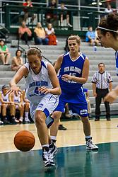 20 June 2009:  Illinois Basketball Coaches Association 3A-4A Girls All Star game.