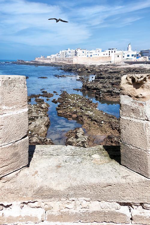 Coastal town Essaouira with sea and seagulls against cloudy blue sky.