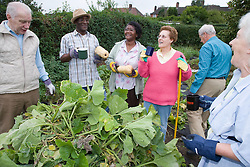 Group of older people having a tea break at the Allotment 'Green Gym',