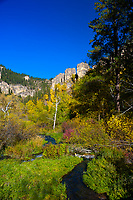 Spearfish Canyon (near Roughlock Falls), near Deadwood, Black Hills, South Dakota USA