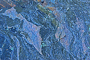 Lichens on Precambrian Shiled rock<br />Kenora<br />Ontario<br />Canada