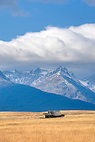 Abandoned homestaed cabin on the Montana plains near the Rocky Mountain Front Ranges of Glacier National Park USA
