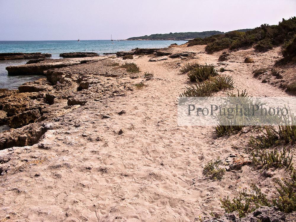 """La Baia dei Turchi si trova a pochi chilometri a nord di Otranto ed è il luogo dove, secondo la tradizione, sbarcarono i guerrieri turchi nel corso dell'assedio alla città di Otranto del XV secolo (battaglia di Otranto). Sabbiosa ed incontaminata, la baia appartiene alla pregiata Oasi protetta dei Laghi Alimini, uno degli ecosistemi più importanti del Salento e della Puglia. La Baia dei Turchi, così come la zona dei Laghi Alimini, è classificata come Sito di Importanza Comunitaria (SIC). Nel gennaio 2007 il Fondo per l'Ambiente Italiano (FAI) ha inserito la Baia dei Turchi tra i primi 100 luoghi da salvare in Italia. La spiaggia si estende su alcune centinaia di metri e si raggiunge dopo aver attraversato una pineta e alcuni sentieri che attraversano la fitta vegetazione fino a sboccare sulla scogliera a picco sul mare. La spiaggia è composta da sabbia intervallata a scogliera..La Baia dei Turchi si raggiunge percorrendo la strada che da Otranto porta alle Marine di Melendugno, dopo aver percorso 1,1 km. si svolta a destra, verso il mare, e una volta incontrato il Club Med alla fine della strada si svolta a sinistra per poi lasciare l'automezzo e proseguire a piedi. Le coordinate sono: +40° 11' 37.85"""", +18° 27' 48.87"""""""