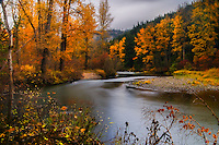Elk Meadows Park, Cle Elum, Washington
