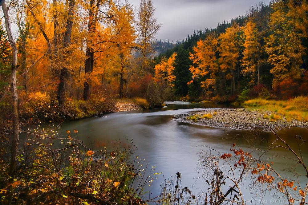 Elk Meadows Park, Cle Elum, Washington