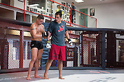 UFC lightweight Diego Sanchez of Albuquerque checks on his sparing partner after an injury at Jackson Wink MMA in Albuquerque, New Mexico on June 9, 2016.