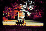 older people sitting on a bench in a park, Westerpark Amsterdam