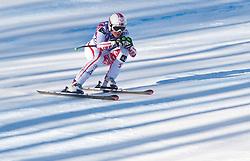 22.01.2011, Tofana, Cortina d Ampezzo, ITA, FIS World Cup Ski Alpin, Lady, Cortina, Abfahrt, im Bild Andrea Fischbacher (AUT, #8) // Andrea Fischbacher (AUT) during FIS Ski Worldcup ladies Downhill at pista Tofana in Cortina d Ampezzo, Italy on 22/1/2011. EXPA Pictures © 2011, PhotoCredit: EXPA/ J. Groder