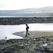 A small boy walks across the beach to rockpool with a fishing net in his hand, Robin Hood's Bay, North Yorkshire, UK