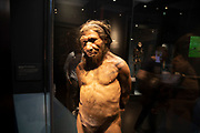 Neanderthal man at the human evolution exhibit at the Natural History Museum in London, England, United Kingdom. The museum exhibits a vast range of specimens from various segments of natural history. The museum is home to life and earth science specimens comprising some 80 million items within five main collections: botany, entomology, mineralogy, paleontology and zoology. The museum is a centre of research specialising in taxonomy, identification and conservation.