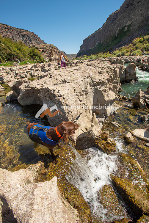 Woman exploring along natural springs and rock formations in the Snake River canyon near Twin Falls, Idaho. MR