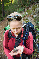 Backpacker inspects small pine cones on Pine Ridge Trail, Big Sur, California.