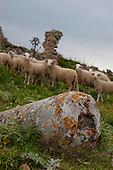 Ancient Polyrinia, Crete