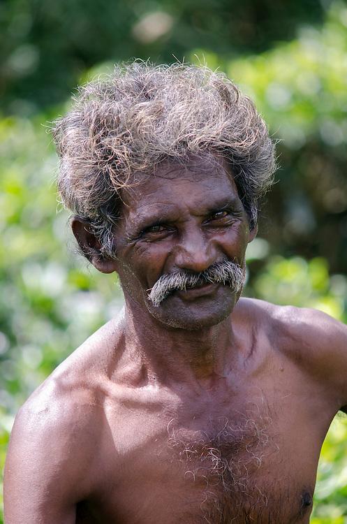 Portrait of a farmer, Southern Highlands, Sri Lanka