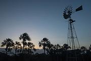 Manari Ranch<br /> Savanna <br /> Rupununi<br /> GUYANA<br /> South America