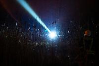 Biebrzanski Park Narodowy, 22.04.2020. Olbrzymi pozar w Biebrzanskim Parku Narodowym. Od niedzieli ( 19.04 ) plonie tam ok. 1400 hektarow lak, torfowisk, trzcinowisk i lasu. Gaszenie pozaru moze potrwac nawet pare dni. BPN jest najwiekszym polskim parkiem narodowym, maja tu swoja ostoje m.in losie oraz liczne gatunki ptakow. W nocy z 21/22.04 zagrozona przez ogien byla wies Dawidowizna N/z strazacy gasza trzcinowiska i usila nie dopuscic do przejscia ognia przez rzeke Biebrze fot Michal Kosc / AGENCJA WSCHOD