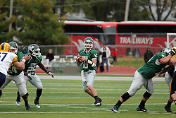 18 October 2014:  Donovan Laible stands easy in the pocket during an NCAA division 3 football game between the Augustana Vikings and the Illinois Wesleyan Titans in Tucci Stadium on Wilder Field, Bloomington IL